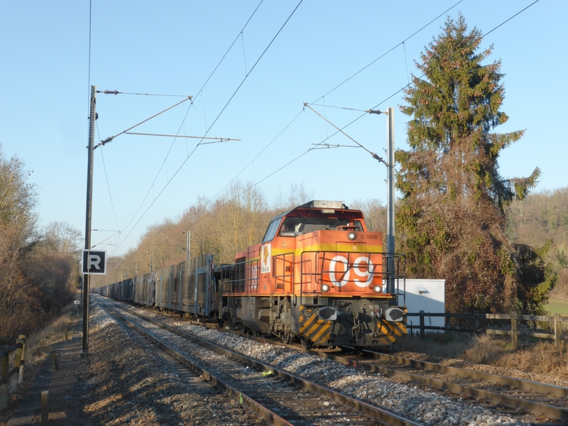 P1330044(1).JPG