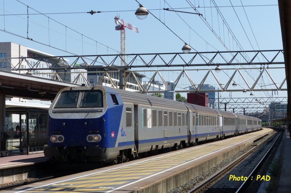 P1330563.JPG
