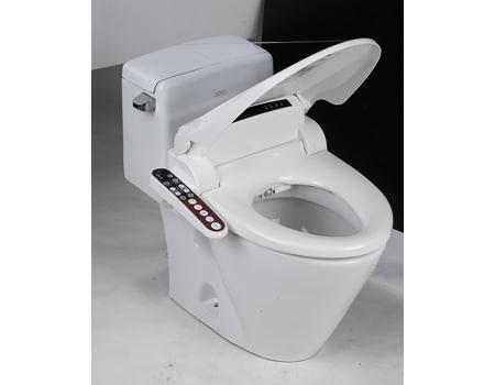 Vers de nouvelles toilettes en gare infra voie - Toilette japonaise prix ...